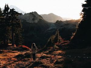 Wendy Orr Raven Der Berg der Gefahren