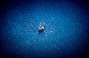 Morton Rhue Creature: Gefahr aus der Tiefe
